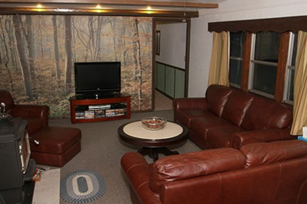 Living area with leather seating and television