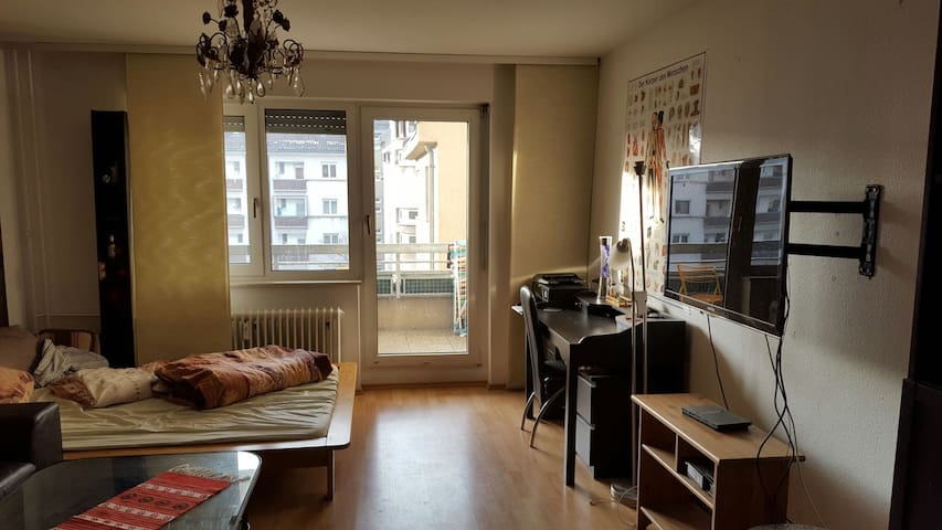 Privet Room+balcony,city heidelberg - Heidelberg - Apartment