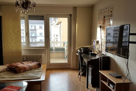 Privet Room+balcony,city heidelberg - Heidelberg - Byt