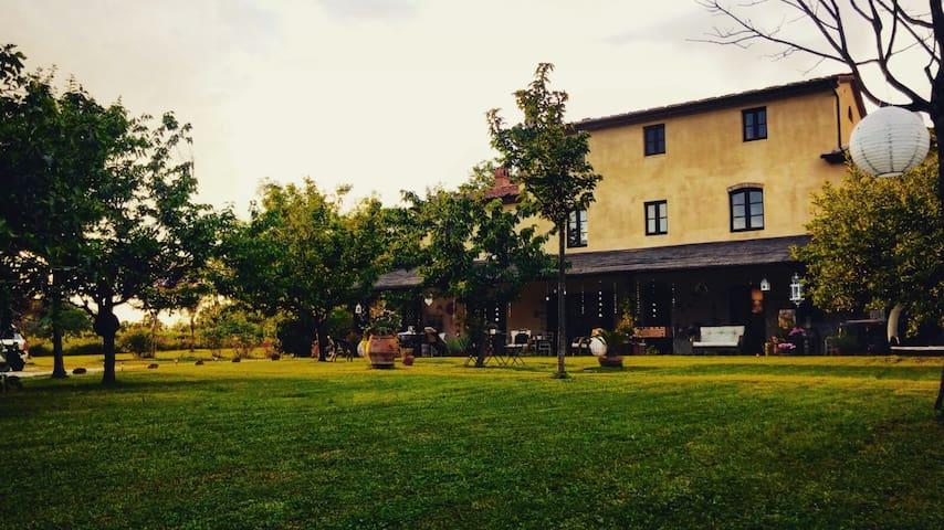 Fiordaliso, Stanza con terrazzo in casale - Orentano