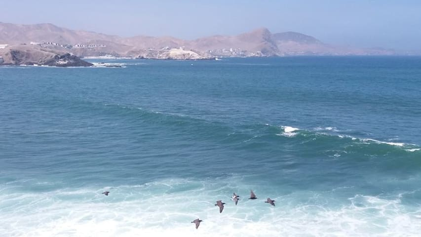 The best view to Peñascal Surfing zone - San Bartolo - Condo
