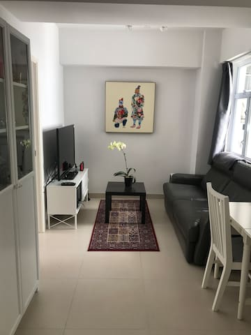 Bright and neatly furnished flat in Happy Valley