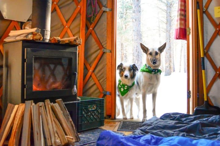 Iris Yurt - Arizona Nordic Village