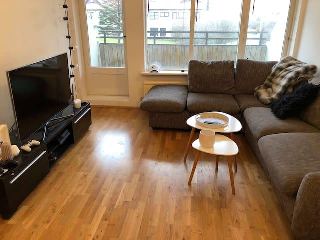Cozy Apartment in Reykjavik