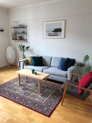Perfect apartment for 1-3 people near city center