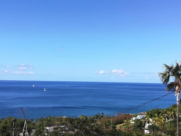 Vieux-Habitants: Superbe maison avec vue sur mer.