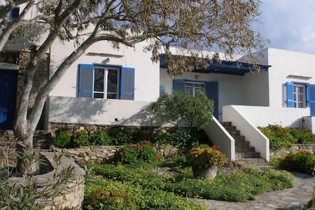 Antiparos beachside house - Antiparos