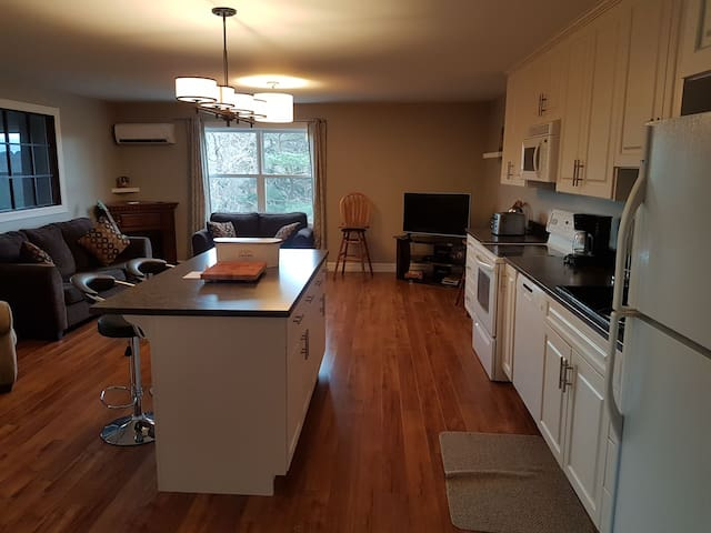 Lg 1 bdrm apt with all the comforts