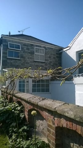 The wisteria is coming out