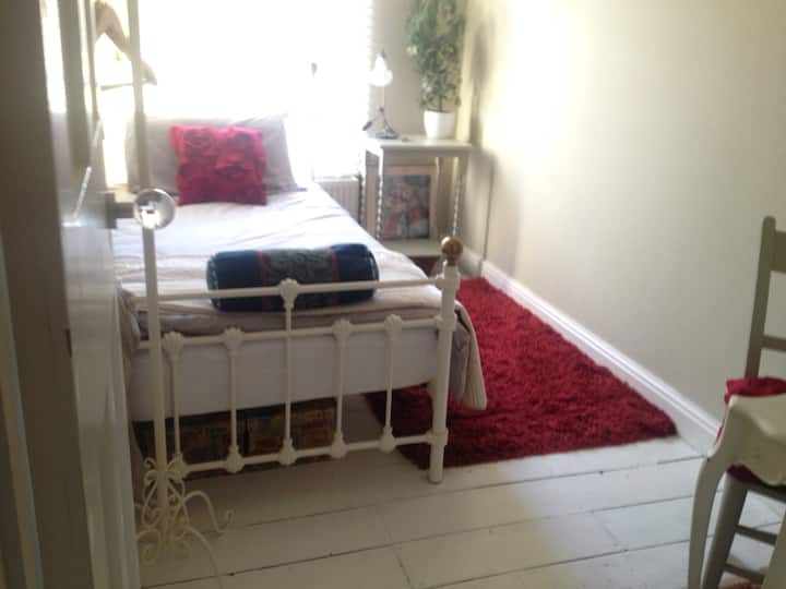 Sunny clean single room-Norwich
