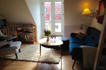 Charming flat in Aarhus C - Aarhus - Lakás