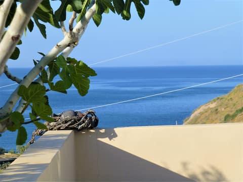 Santorini C Villa, private and quiet on the beach.