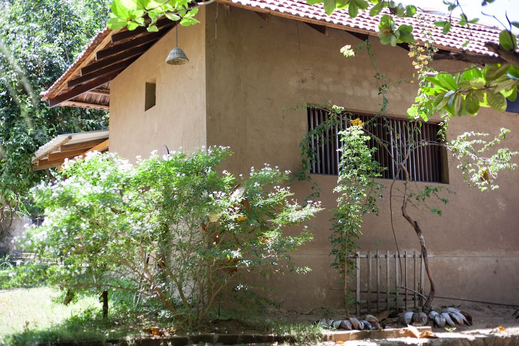 Earth House - view from the garden