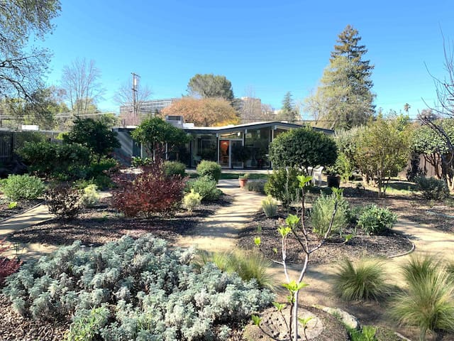 Walnut Creek Oasis- 4 BR mid-cent. home