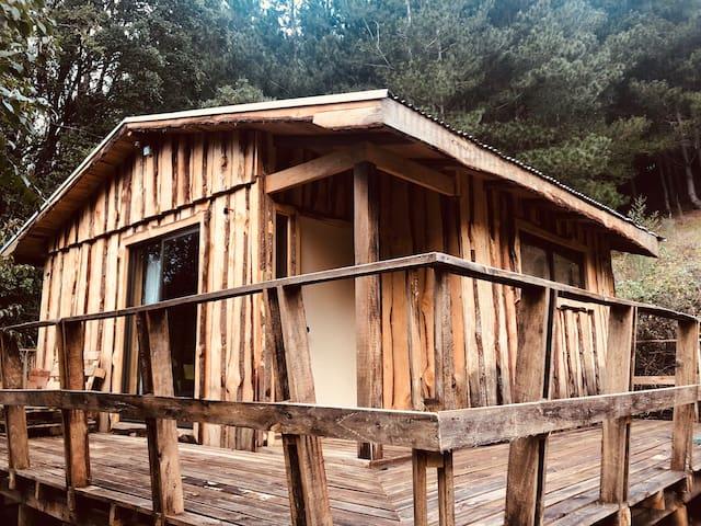 Cabaña + tinaja caliente en un ambiente natural