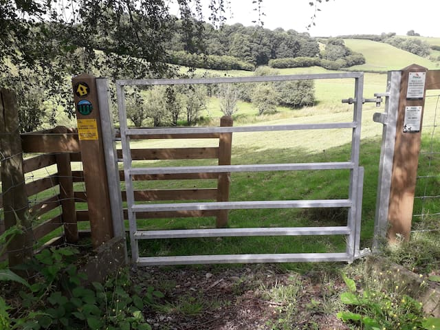 Part of the new heart of wales trail on our doorstep from Llanbister Road station