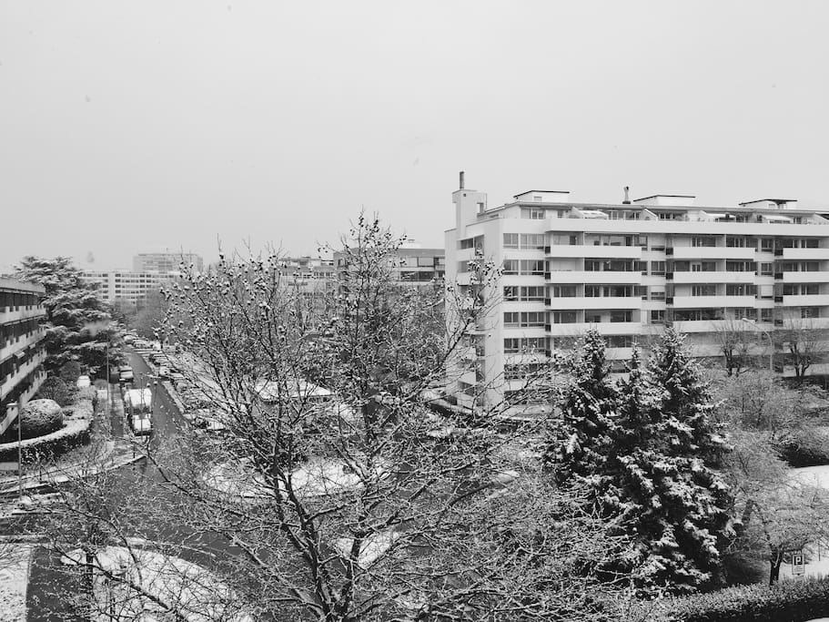 The view from the living room during winter time