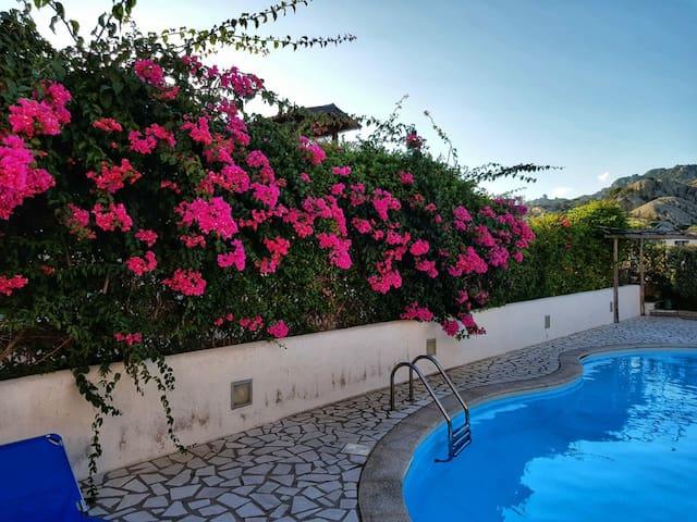 Splendido Flat con piscina a Porto Cervo
