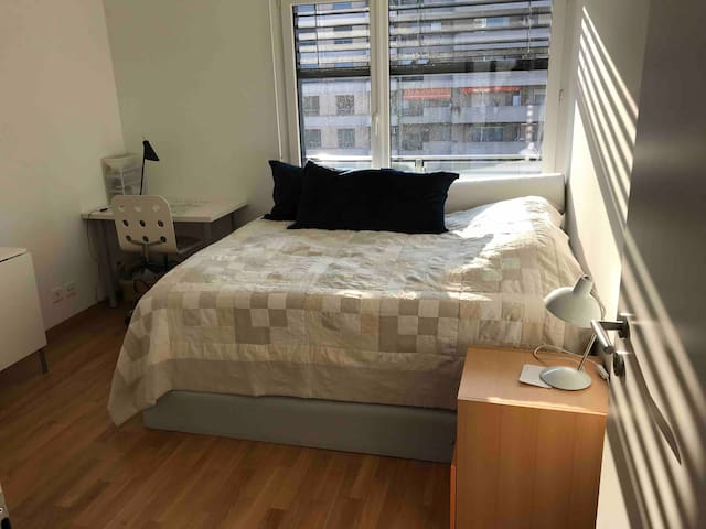 Room w king-size bed in Carouge, Geneva