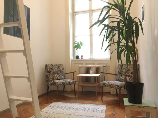 Cosy Room in an authentic viennese Flat in 1060