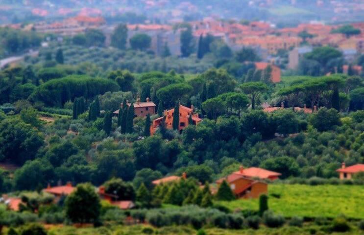 b&b La Gioia - Monte Porzio Catone - Wikt i opierunek
