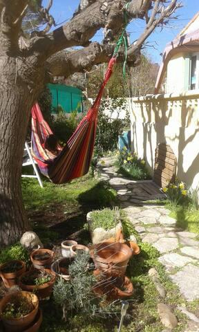 Hamac tree in minihostel garden/coliving,wifi,park