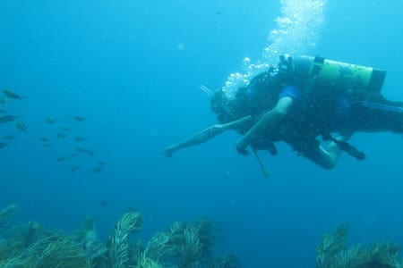 Scuba Diving with Accommodation - Richmond Vale - Casa