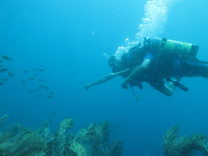 Scuba Diving with Accommodation