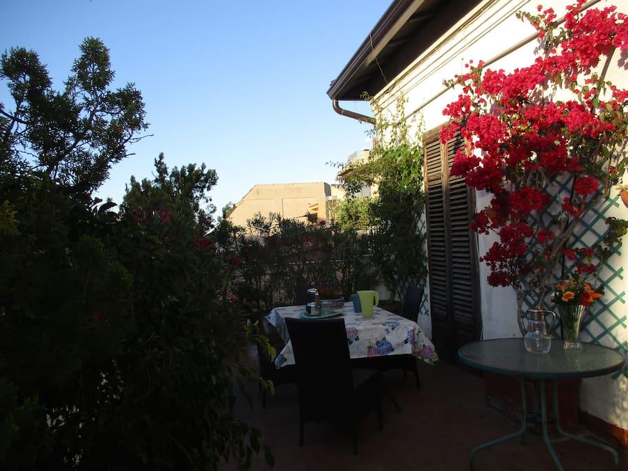 terrazzo