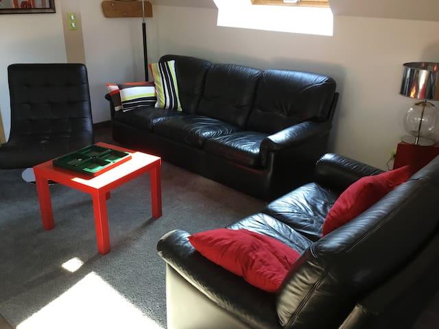 salon 2 canapés cuir plus un fauteuil