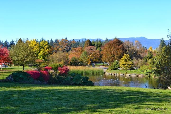 Beautiful Stanley Park