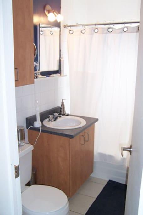 Shared Main Bathroom