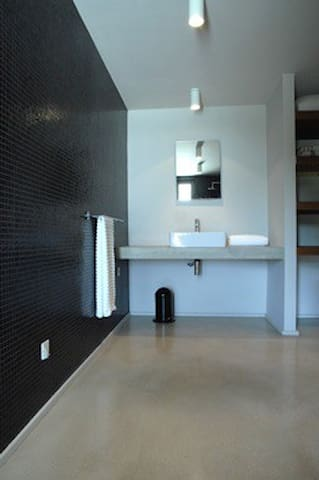 bathroom with shower on pool level