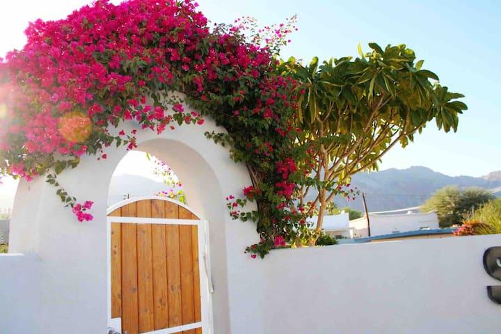 Villa Vallejo  <Lic#064207> 3 BDR