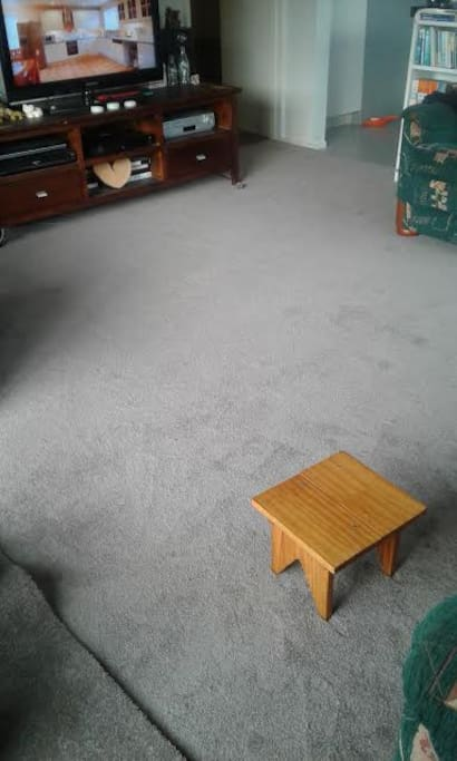 Living room showing the new carpet