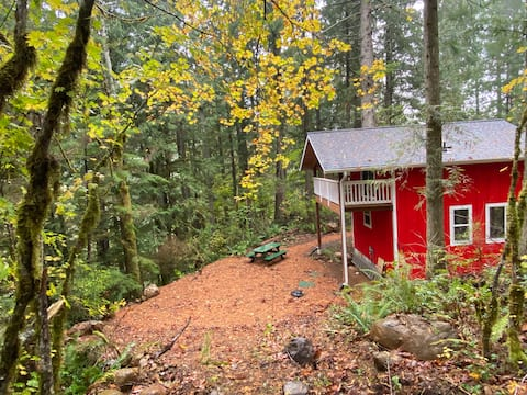 Red Cabin in the Woods - the Olympic Peninsula