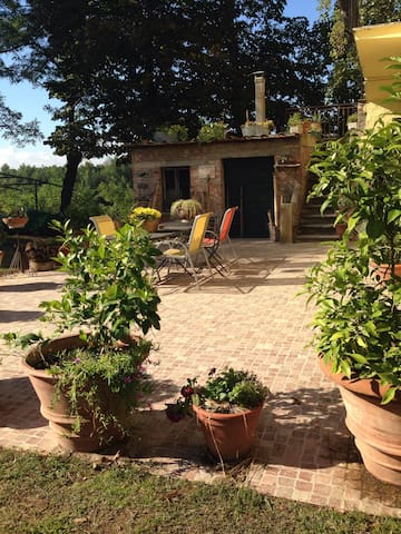 Apartment in the farm house - Montopoli in Val D'arno - House