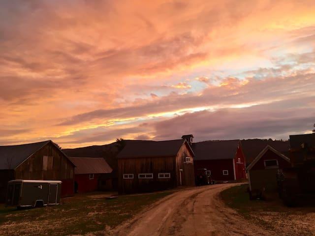 "Pinestead Farm Lodge, unit 4, ""The Pantry"""