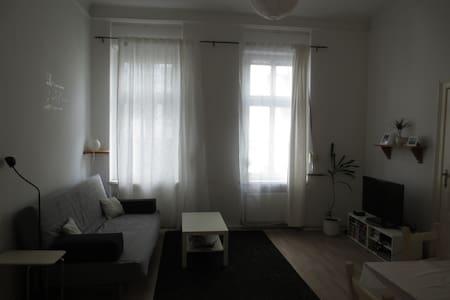 Helle Altbau-Wohnung in Süd-Berlin - Berlin - Apartment