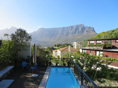 Amazing Views Cape Town  - Nature & the City