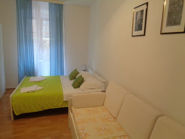 Cozy and economic Fina Studio apartment Gordana