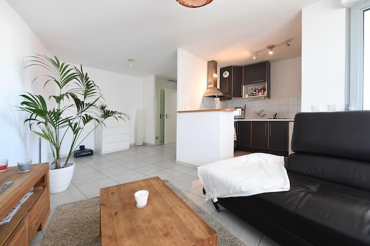 Appartement de 55m² T2 cosy - Castelnau-le-Lez - Wohnung