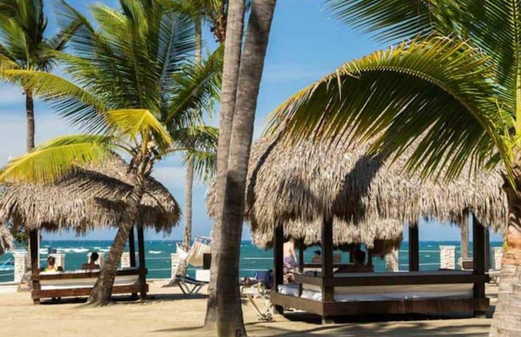 Studio - Cofresi Palm Beach Puerto Plata DR