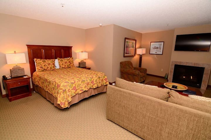 A204- Studio standard view suite w/ fireplace & private balcony!