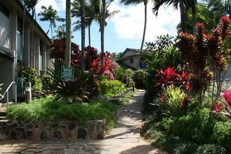 Maui No ka 'oi!! (Maui is Number 1!!) - Lahaina - Wohnung