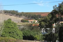 View of Ormonde Wine Farm