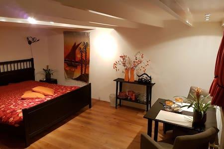 Luxe kamer met badkamer - all prive - Beusichem - Apartment