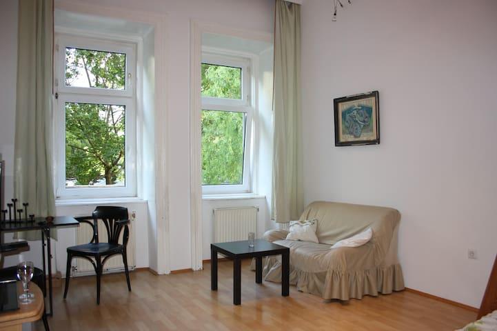 Authentic vienna city apartment - Vienna - Pis