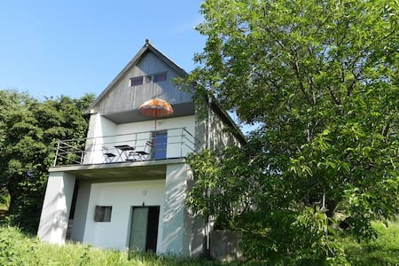 Charming house on winehill at Balaton w great view - Tagyon - Hus