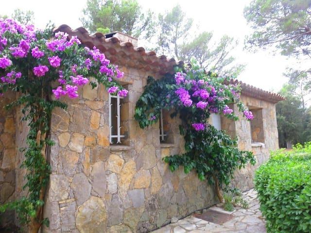 Spacious Provencial Home with pool - Taradeau - House